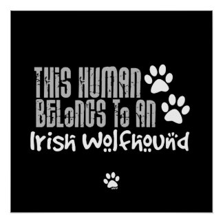 This Human Belongs to an Irish Wolfhound Posters