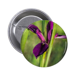 This is a Louisiana Gamecock Wildflower - Iris hex Button