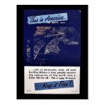 This Is America Keep It Free! Postcards
