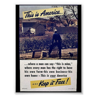 This Is America Keep It Free Poster