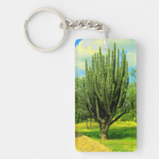 This is cool cactus keychain