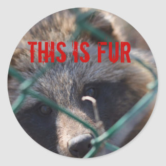 This Is Fur! Classic Round Sticker