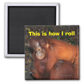 This is How I Roll animal style 2 Inch Square Magnet