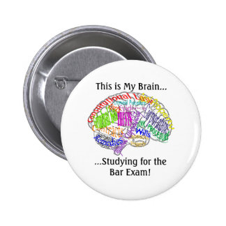 This is my brain...Bar Exam Pinback Button