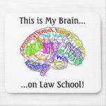 This is my brain...Law School Mousepad
