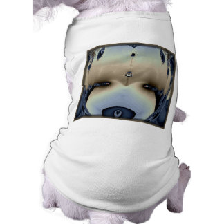 This is my Teddy Bear Pet Clothing