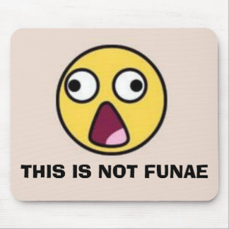 THIS IS NOT FUNAE MOUSE PAD