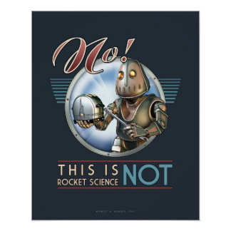 """This is NOT Rocket Science poster (16x20"""")"""