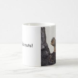 This is nuts! classic white coffee mug