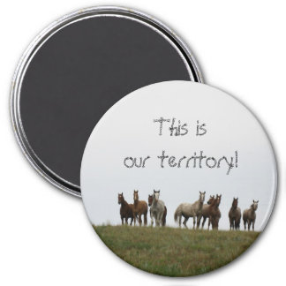 """This is our territory"" 3 Inch Round Magnet"