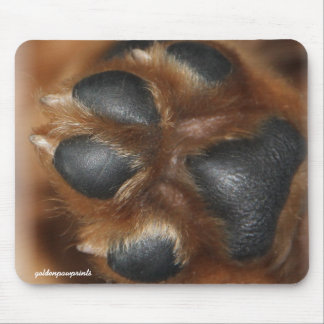 This is the Golden Penny Paw mouse pad