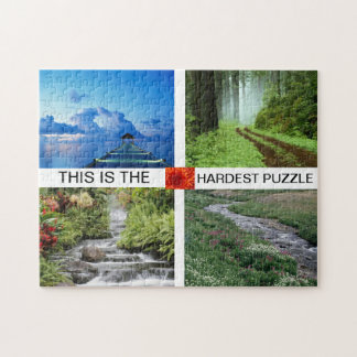'This is the hardest puzzle' puzzle