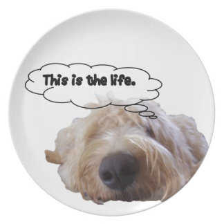 This is the life Goldendoodle Plate