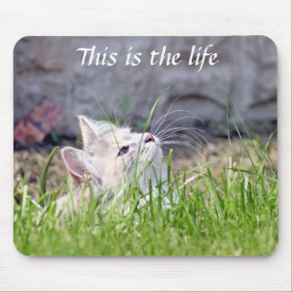 This is the life  mousepad