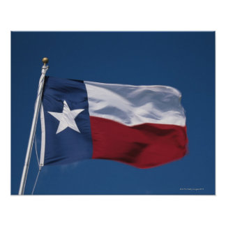 This is the State Flag flying in the wind. it is Poster