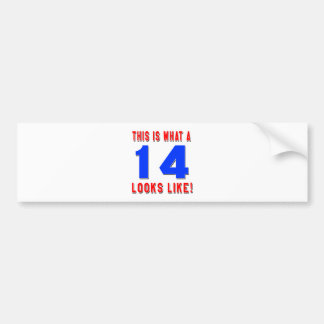 This is what a 14 looks like bumper sticker
