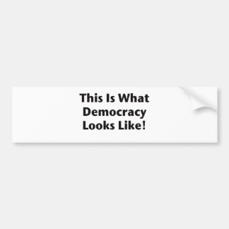 This is What Democracy Looks Like! Bumper Sticker