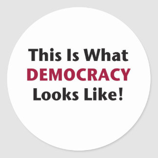 This is What Democracy Looks Like! Classic Round Sticker