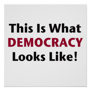 This is What Democracy Looks Like! Poster