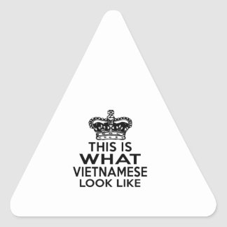 THIS IS WHAT VIETNAMESE LOOK LIKE TRIANGLE STICKER