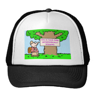 this is your park, metaphorically speaking mesh hats