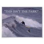 THIS ISN'T THE PARK! POSTERS