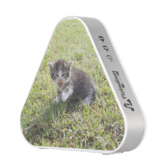 This Kitten fights for Freedom Bluetooth Speaker