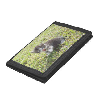 This Kitten fights for Freedom Trifold Wallet