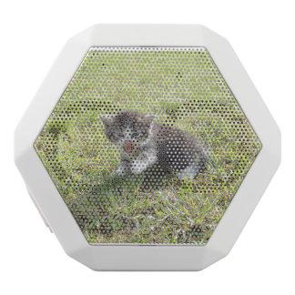 This Kitten fights for Freedom White Bluetooth Speaker