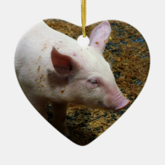 This Little Piggy - Baby Piglet Photo Ceramic Ornament
