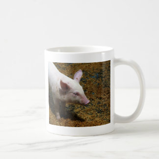 This Little Piggy - Baby Piglet Photo Coffee Mug