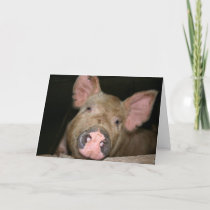 This Little Piggy says Get Well Card