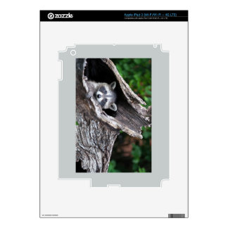 This Looks Like a Good Hiding Place iPad 3 Decals