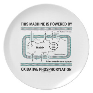 This Machine Powered By Oxidative Phosphorylation Dinner Plate