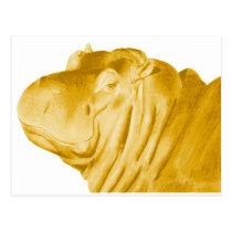 THIS MAJESTIC HIPPO POSTCARD