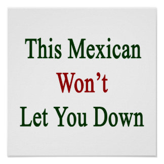 This Mexican Won't Let You Down Poster