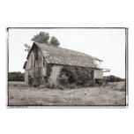 This Old Barn Photo Print