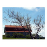 This Old Barn Postcard