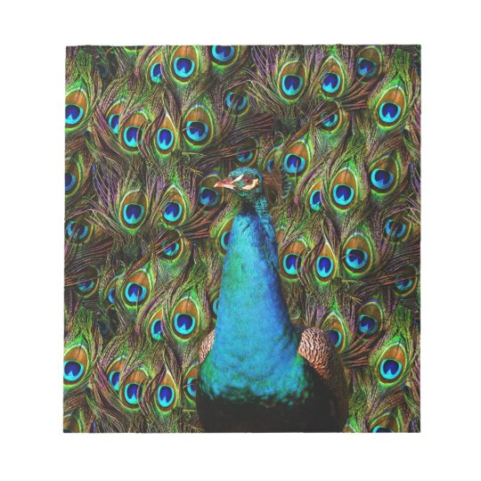 This peacock is watching you! notepad