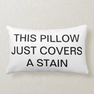 This Pillow Just Covers a Stain