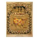 This porcineograph postcard