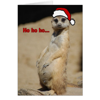 This Pregnant Meerkat Santa Momma Card