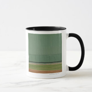 This wall is known as 'the Green Monster.'Foul Mug