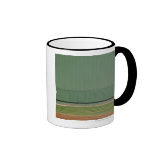 This wall is known as 'the Green Monster.'Foul Ringer Mug