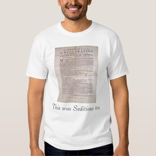 This was Seditious too T Shirts