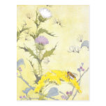 Thistle and Bee on Goldenrod Postcard