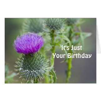 Thistle Birthday Card