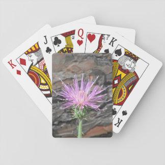 Thistle Bloom in Front of Fallen Tree Poker Deck