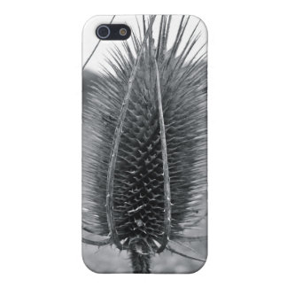 Thistle by Uncle Junk Cover For iPhone 5