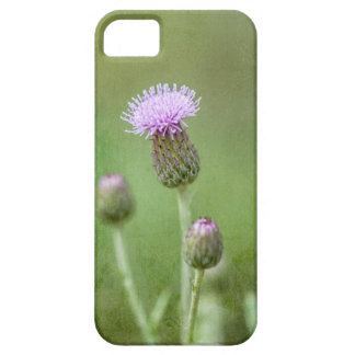 Thistle iPhone 5 Covers